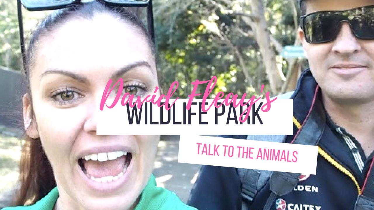 samantha clark wildlife park vlog gold coast