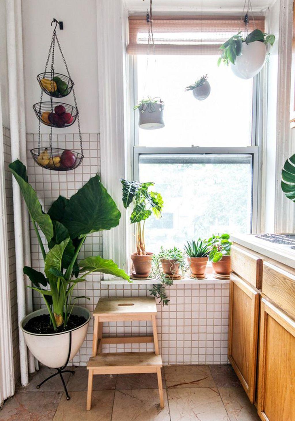 rental home interiors ideas plants blog
