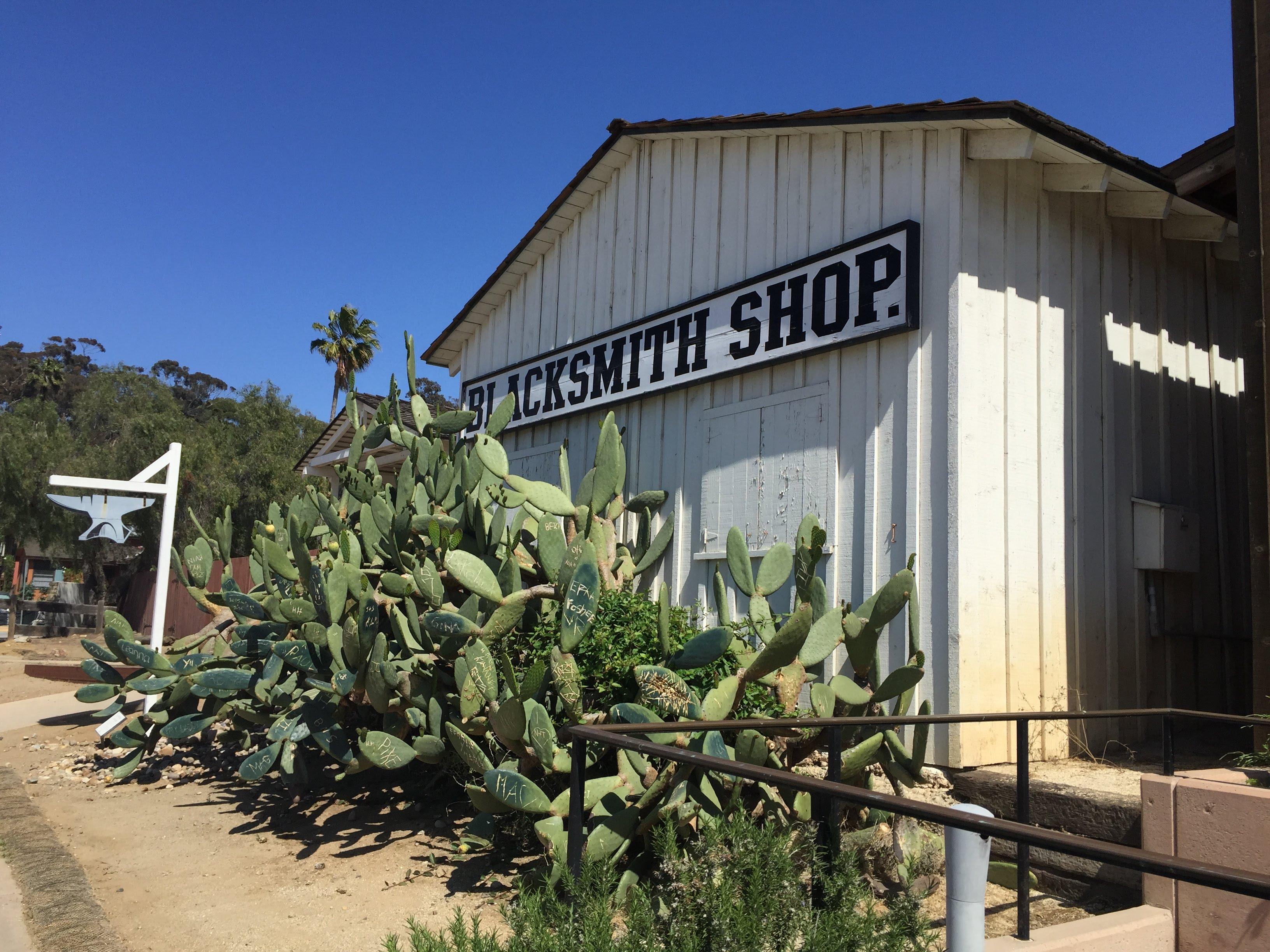san diego west coast travel ben sam adventures blog ideas cactus