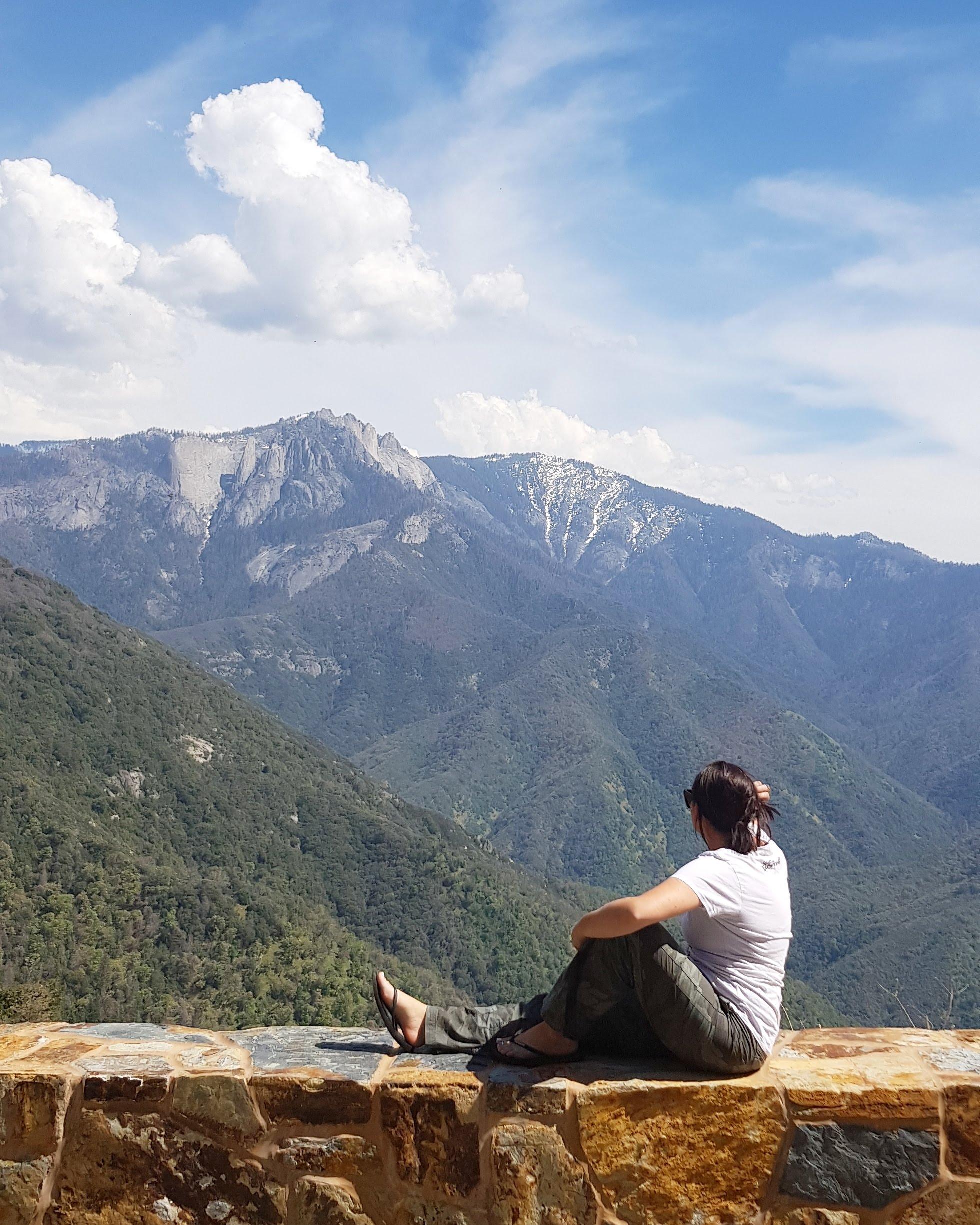 scenic sequoia national park travel vlog blog campervan views