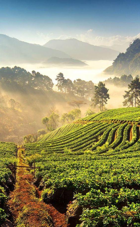 sensational slow travel destinations travel blogger chiang mai thailand