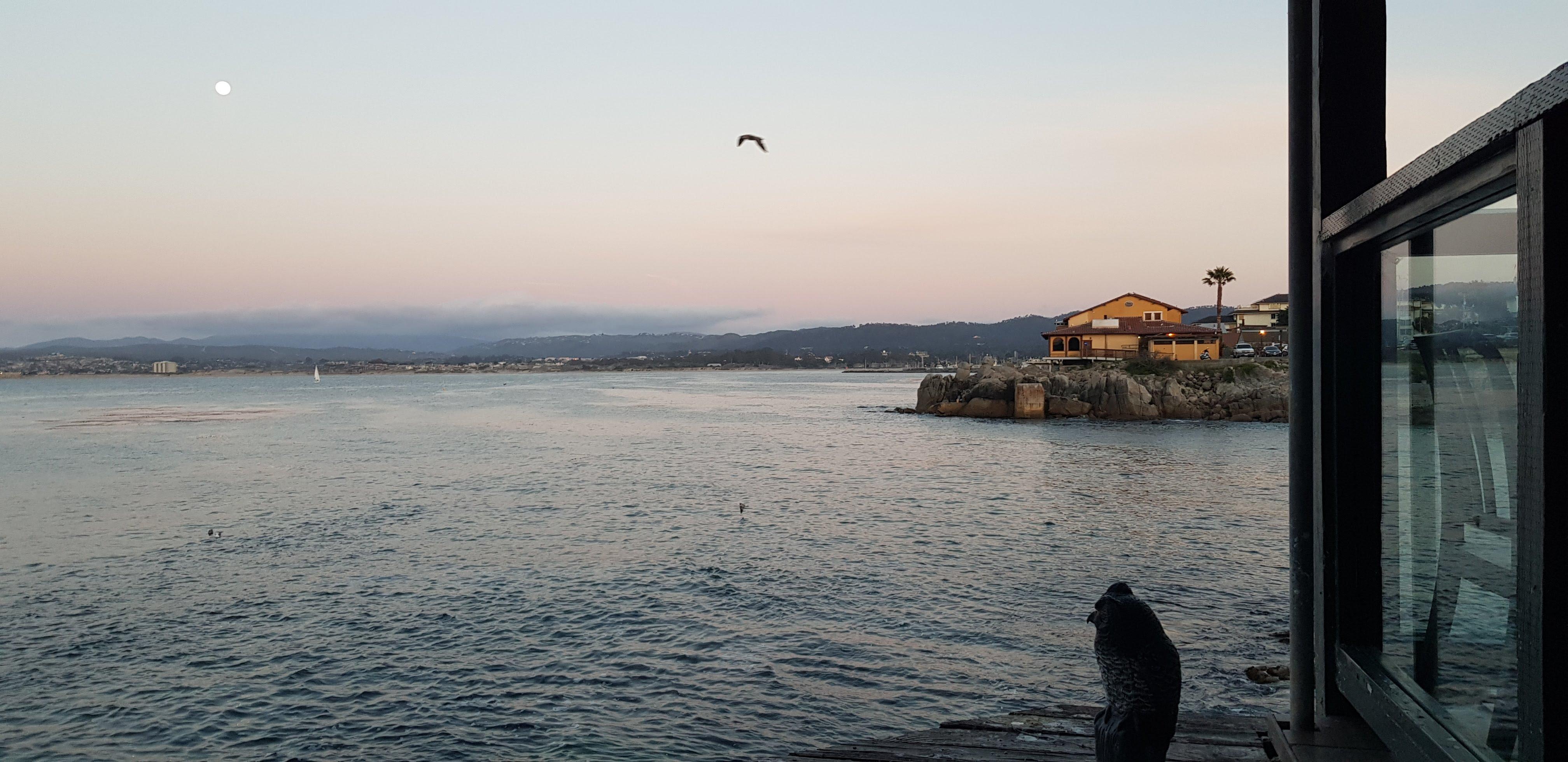 monterey california travel vlog blog samantha clark